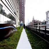 Parsons alumnus Josh Stone (M.Arch '13) walks across the University Center's green roof last October. (Photo by Kasia Broussalian)