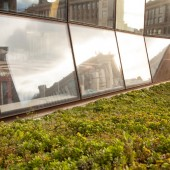UC_Green_Roof