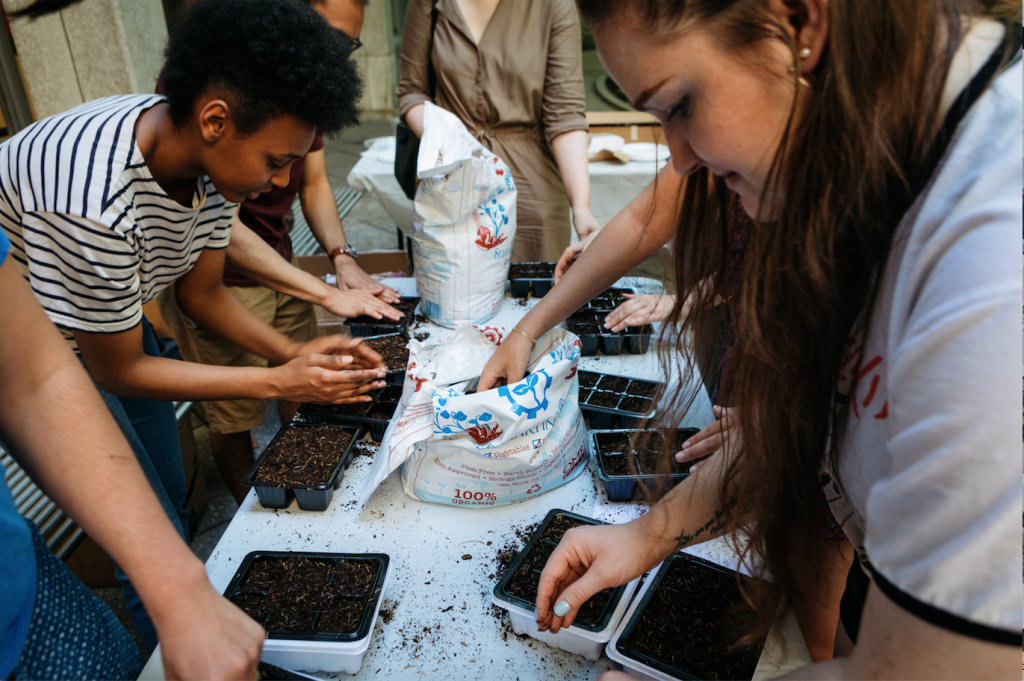 New School students propagate seeds for the upcoming exhibition, The Vera List Center Prize for Art and Politics 2016-2018: Maria Thereza Alves, Seeds of Change — A Botany of Colonization (Photo / Matt Mathews)