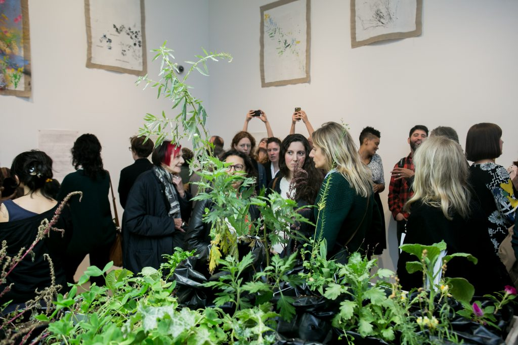 """Seeds of Change"" Exhibition"