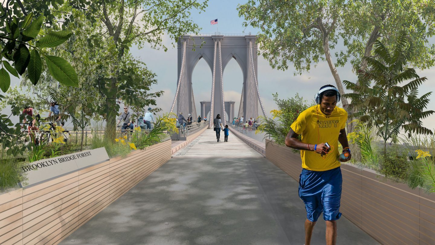 Brooklyn Bridge Forest, design winner of