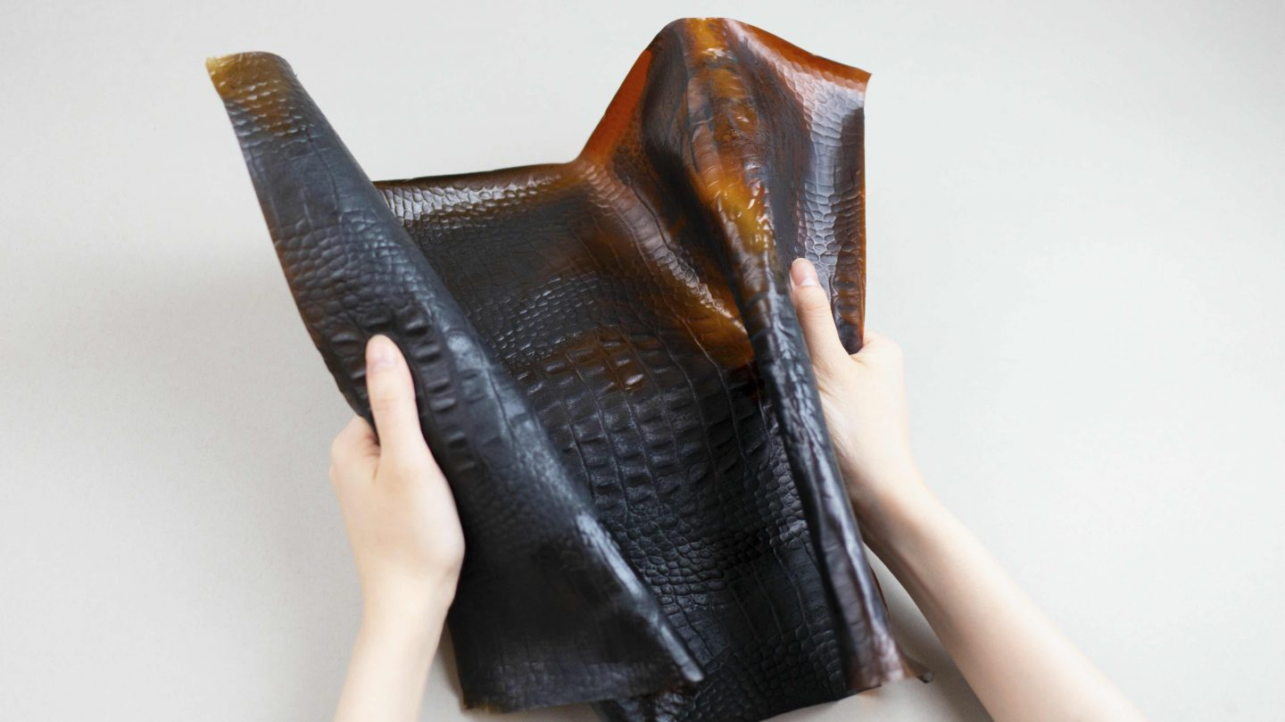 Tômtex is a biomaterial created from shell seafood waste and coffee grounds that aims to be an alternative to faux leather.