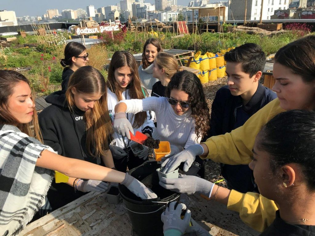 Sustainable Systems class visit to an urban roof garden