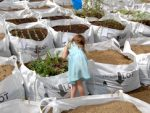 Vacant Lot grow bag, What if: projects Ltd
